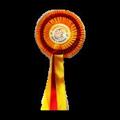 Auszeichnungen / Schlüsselbänder